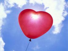 Pdl: il Partito dell'Amore