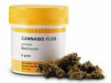 Bedrocan farmaco cannabis