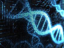 DNA-e-banca-dati
