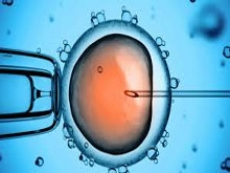 Selezione embrioni