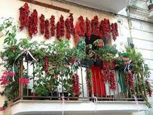 Festival-peperoncino-calabrese