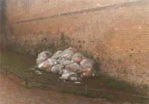 Giardino Aranci spazzatura